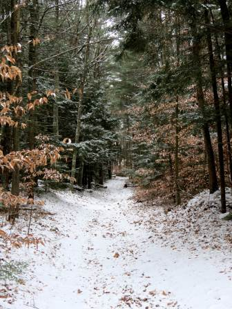 1. Snow Covered Trail