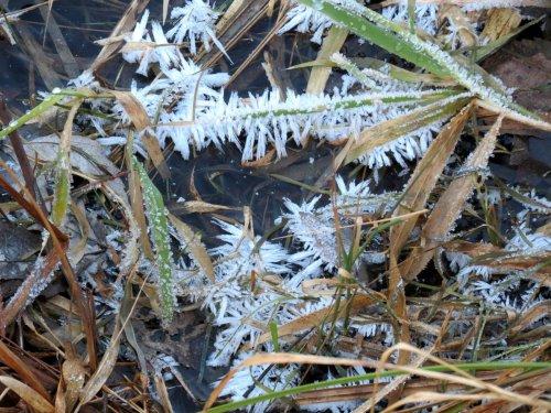 5. Hoar Frost