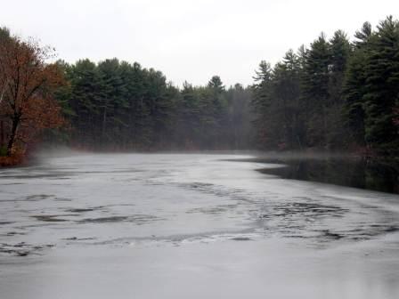 7. Foggy Pond