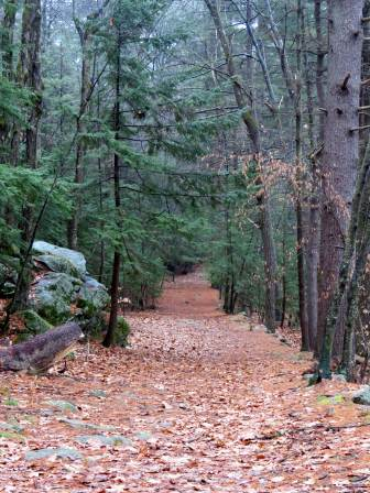9. Trail After Snow Melt