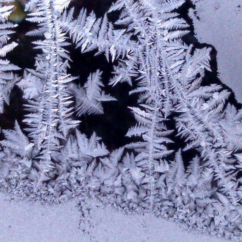 1. Frosty Window at 10 Below