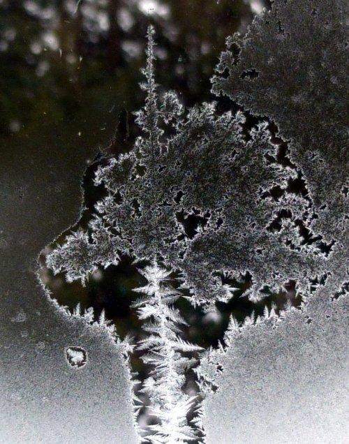 6. Window Frost