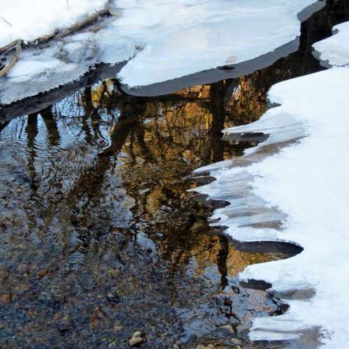 7. Reflections in Stream