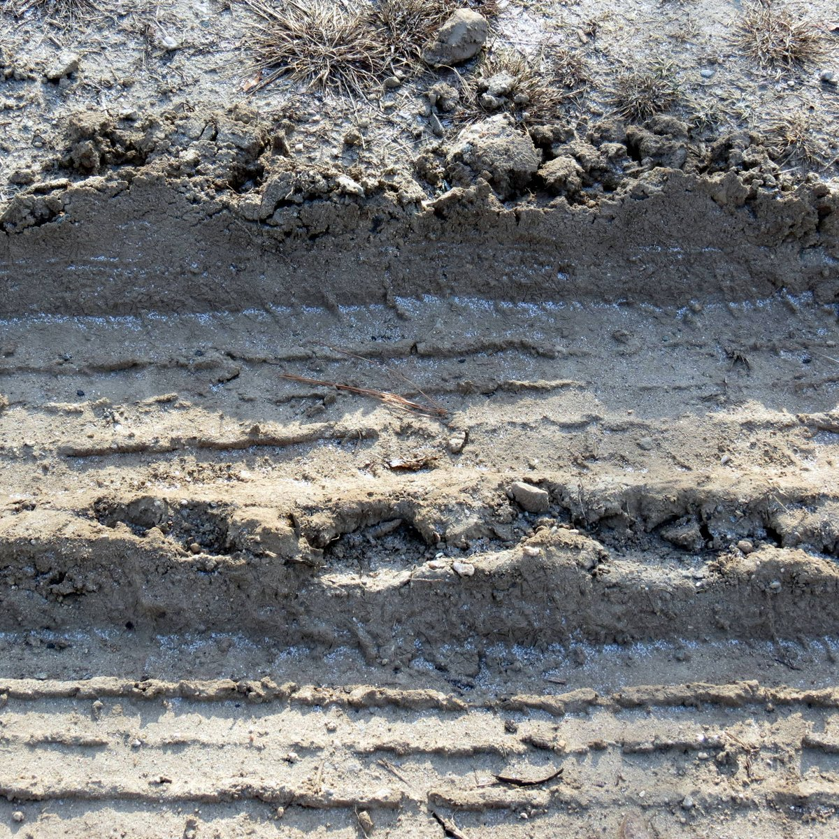 7. Mud