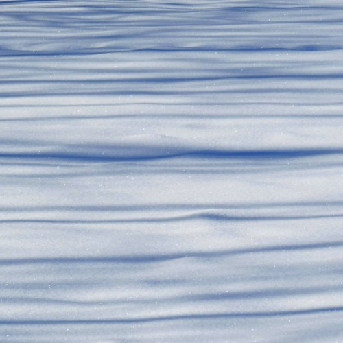 6. Shadows on Snow
