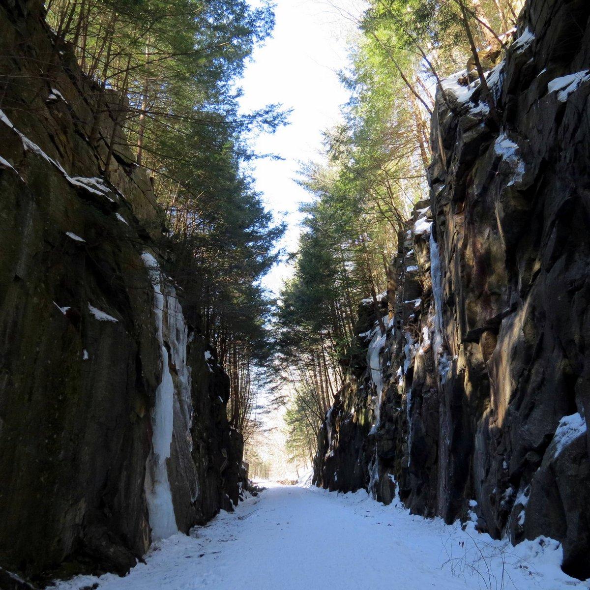 6. Trail through Ledges