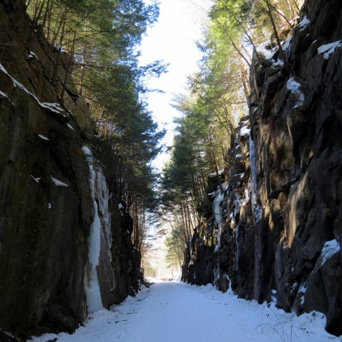 6. Trail through Ledges