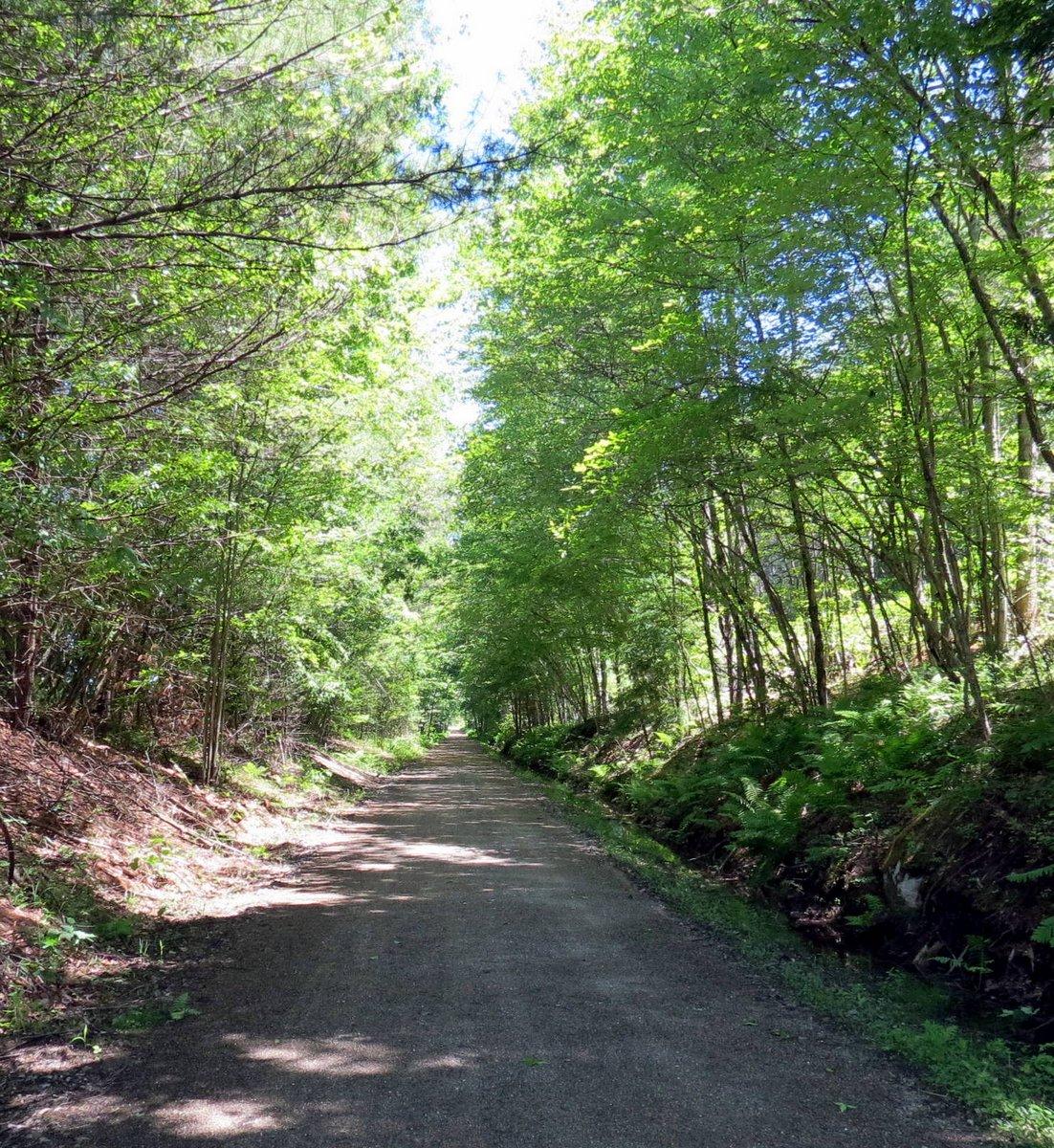 4. Rail Trail