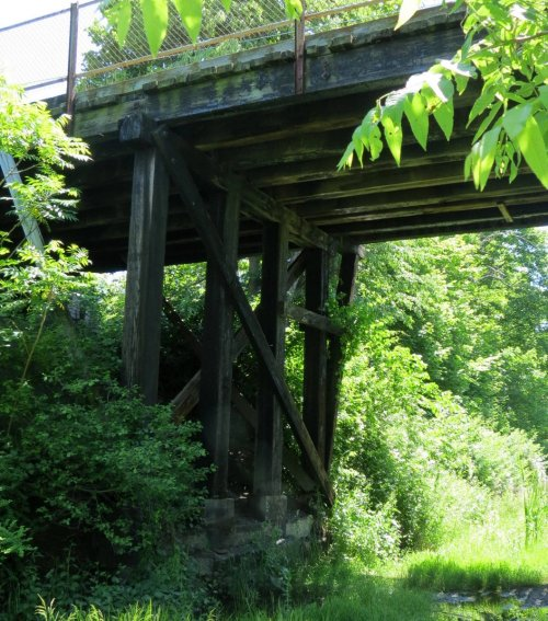 9. Timber Frame Bridge Support