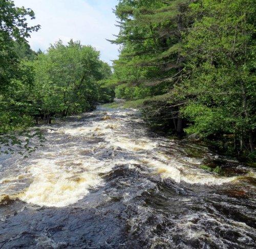 12. Ashuelot Rapids on 6-30-13