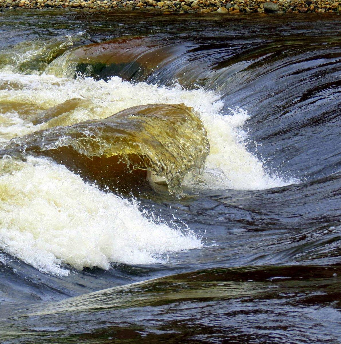 13. Ashuelot Rapids on 6-29-13