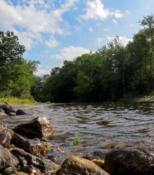 1. River View