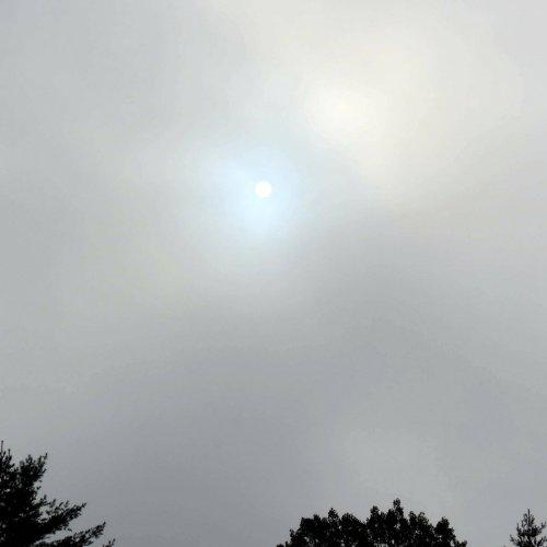 10. Dim Sun