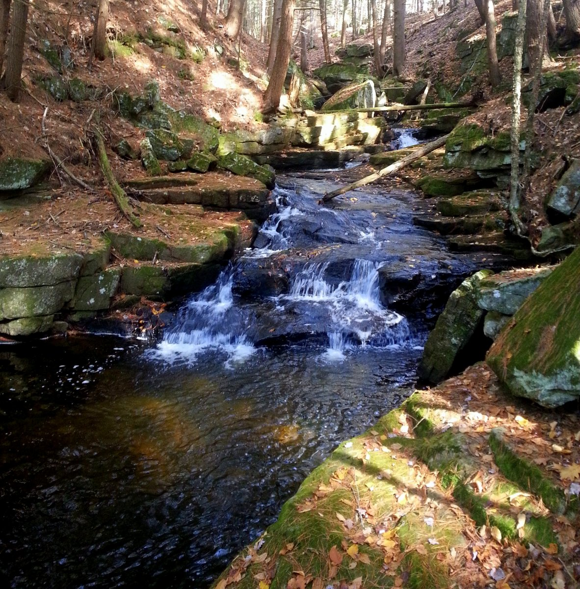 1. Brickyard Brook