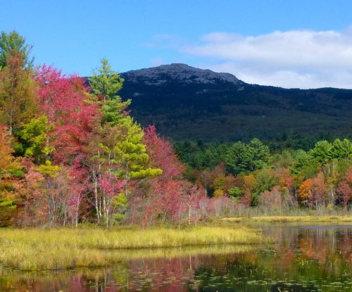 4. Monadnock from Perkin's Pond in Troy