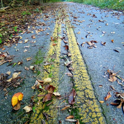 5. Abandoned Road Lines