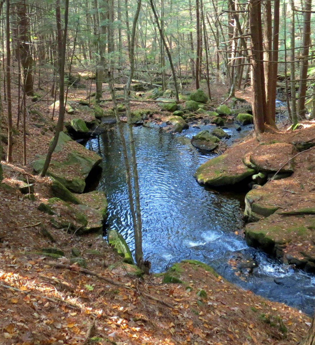 6. Pool in Brickyard Brook