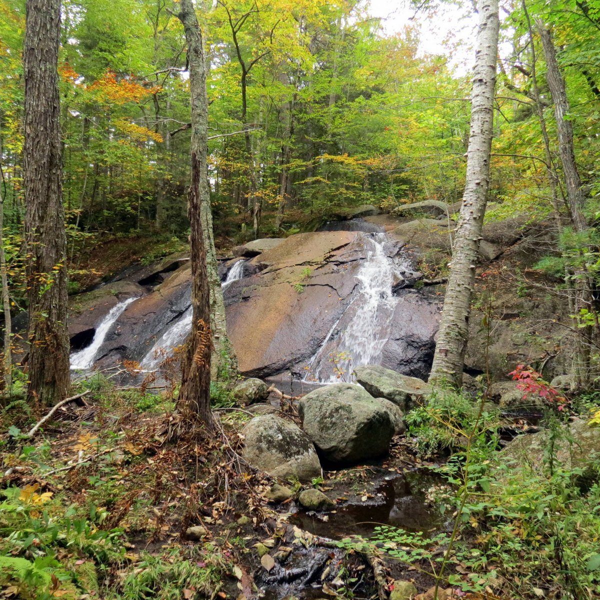 9. Bailey Brook Upper Falls 2