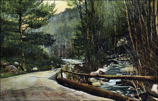 9. Beaver Brook Postcard