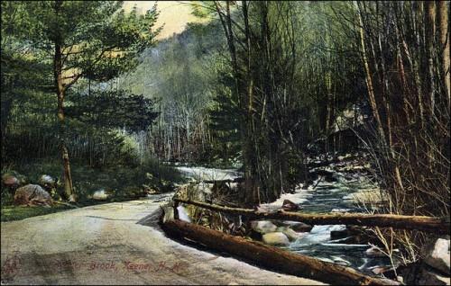 9. Beaver Brook Postcard