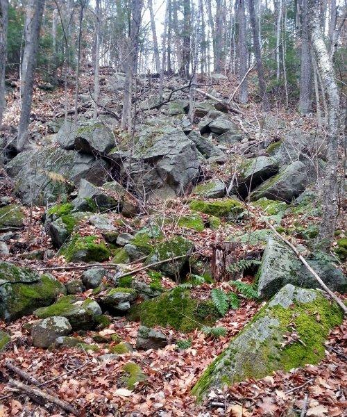 1. Rocky Hillside