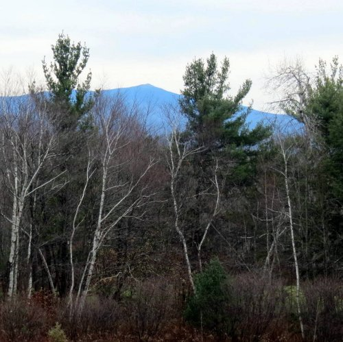 13. Monadnock from High Blue Trail