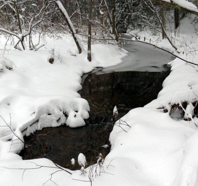 3. Snowy Stream