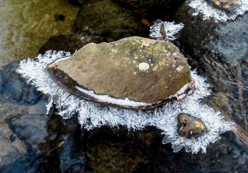 5. Ice on Stone