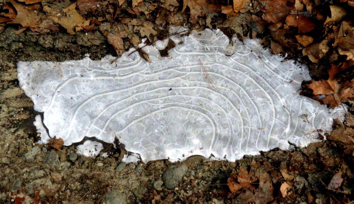 8. Puddle Ice