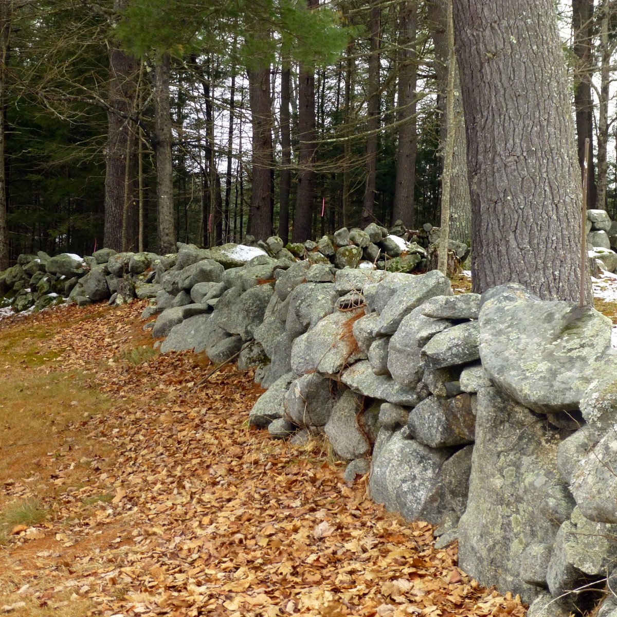 1. Stone Walls
