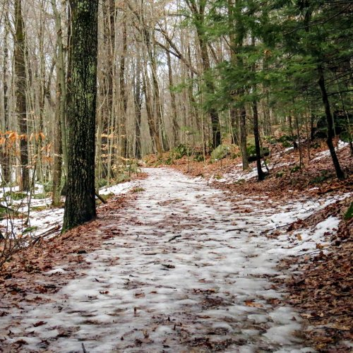 2. Icy Trail