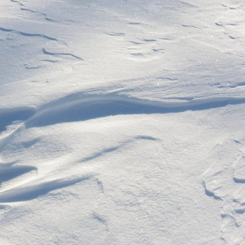 5. Wind Sculpted Snow