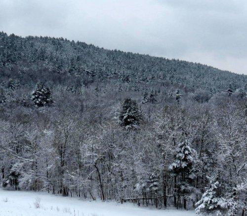 7. Snowy Hillside 3