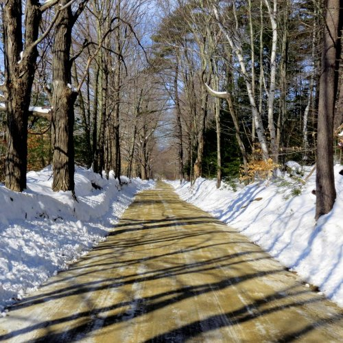 1. Snowy Road