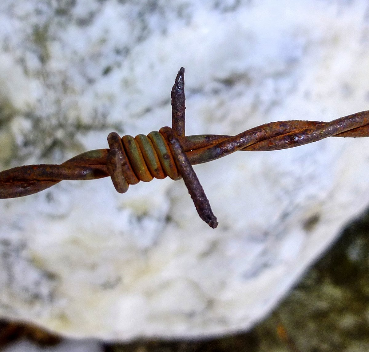 14. Barbed Wire