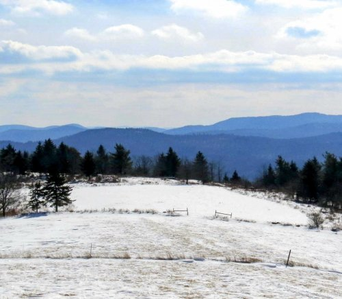 4. Pitcher Mountain Pasture