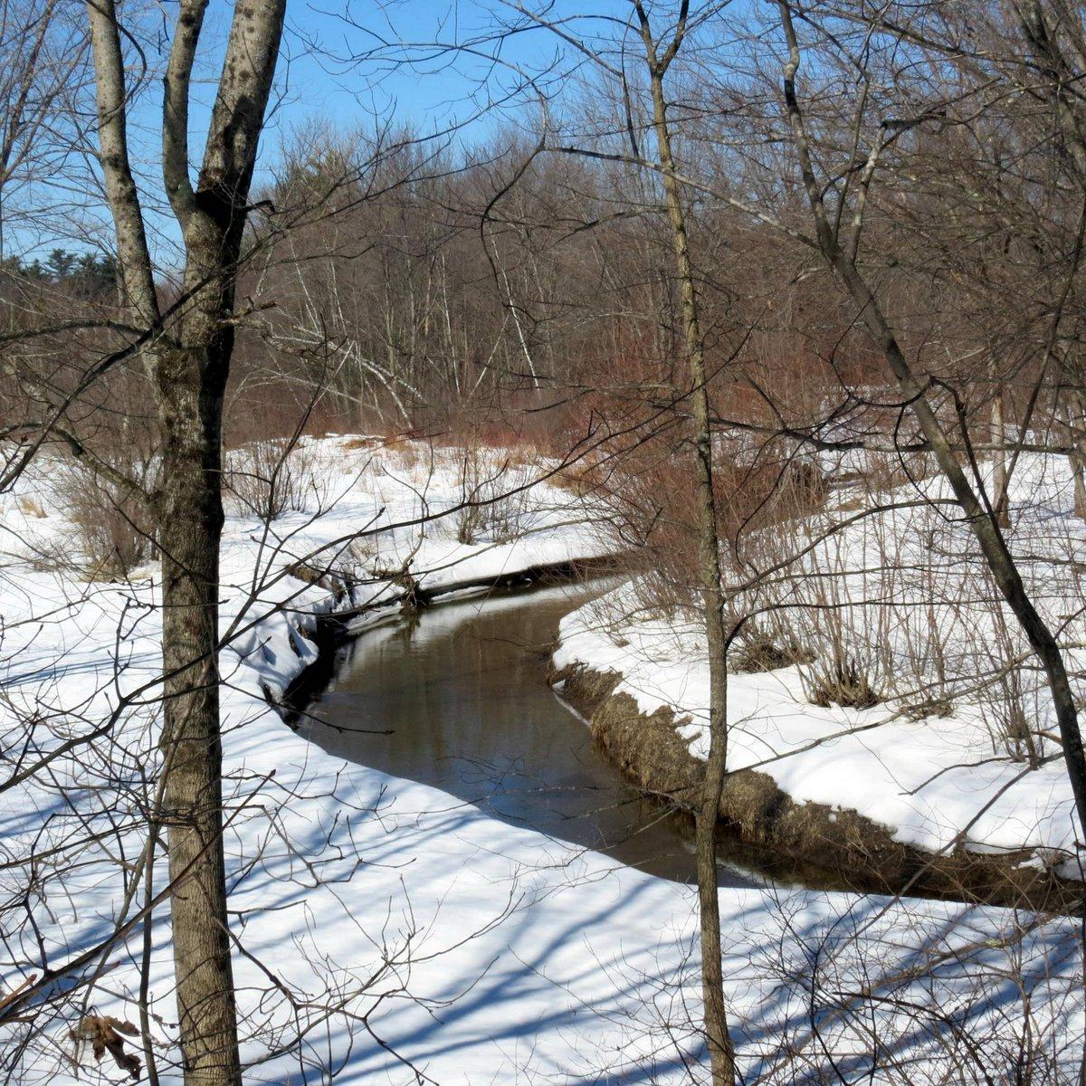 7. Ash Swamp Brook in Winter