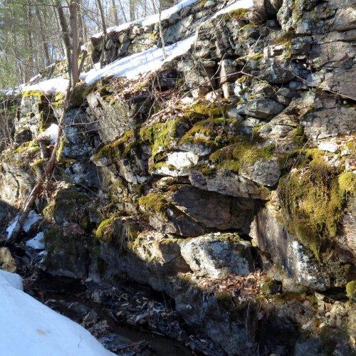 7. Mossy Walls