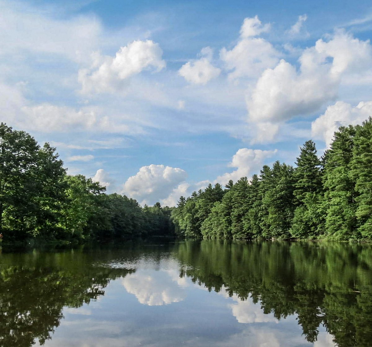 5. Pond View