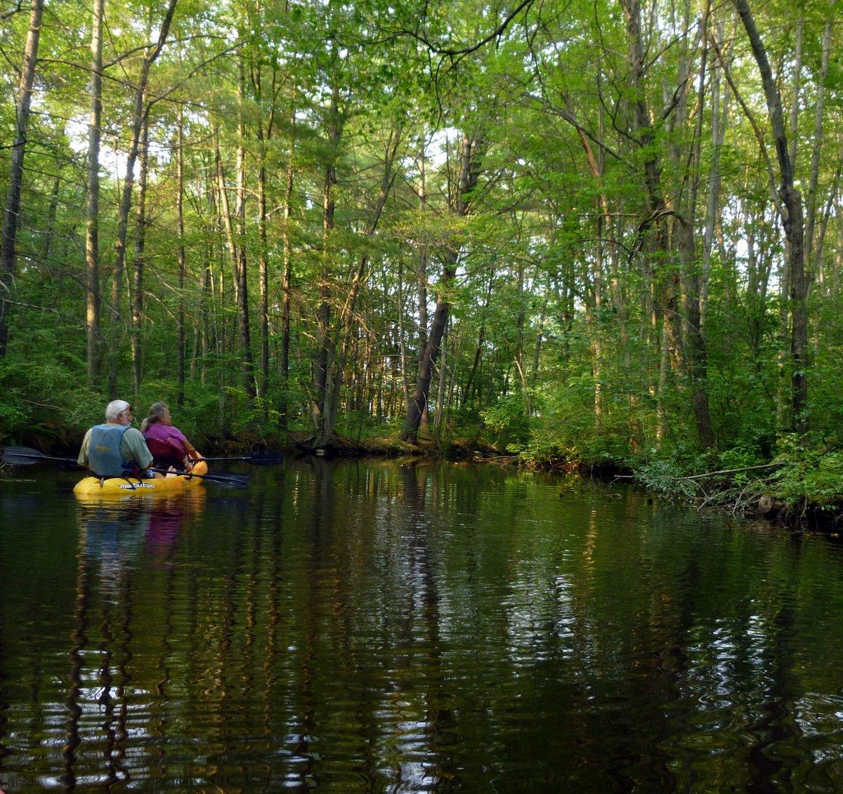 4. Kayaking