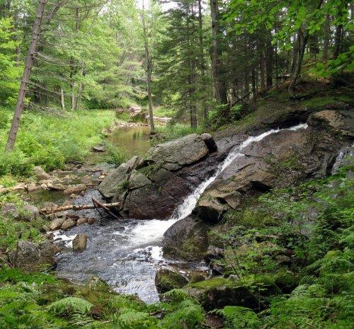7. Bailey Brook Lower Falls