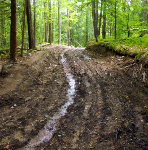 9. Trail