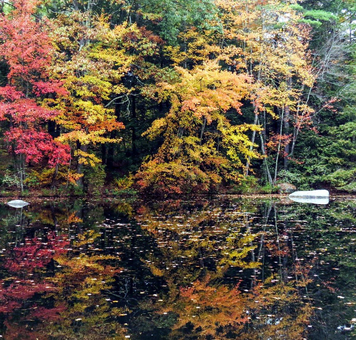 7. Lake View