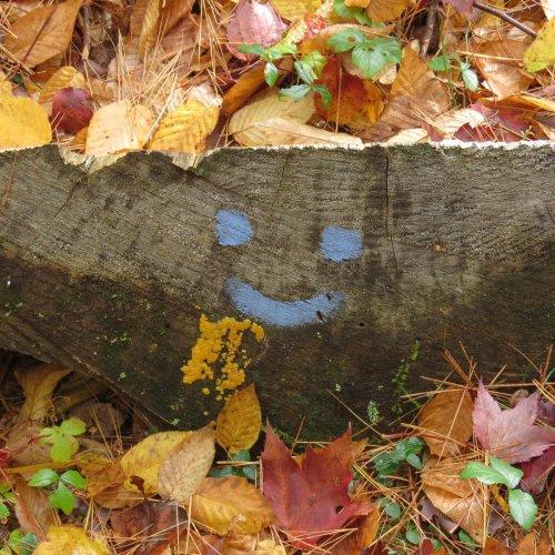 9. Smiley Face