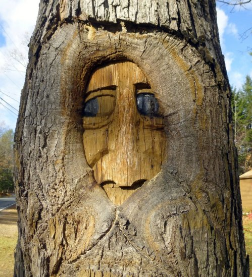 1. Tree Carving