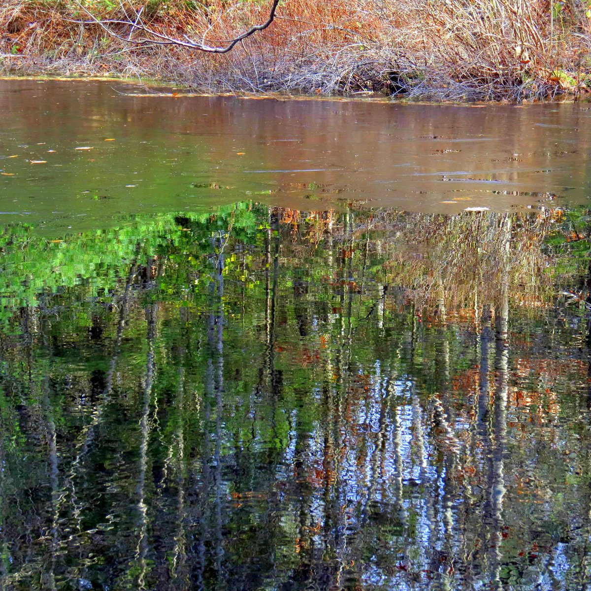 12. Ice on High Blue Pond