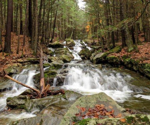 2. Lower Falls