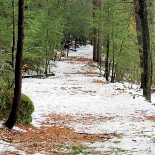 1. Snowy Path