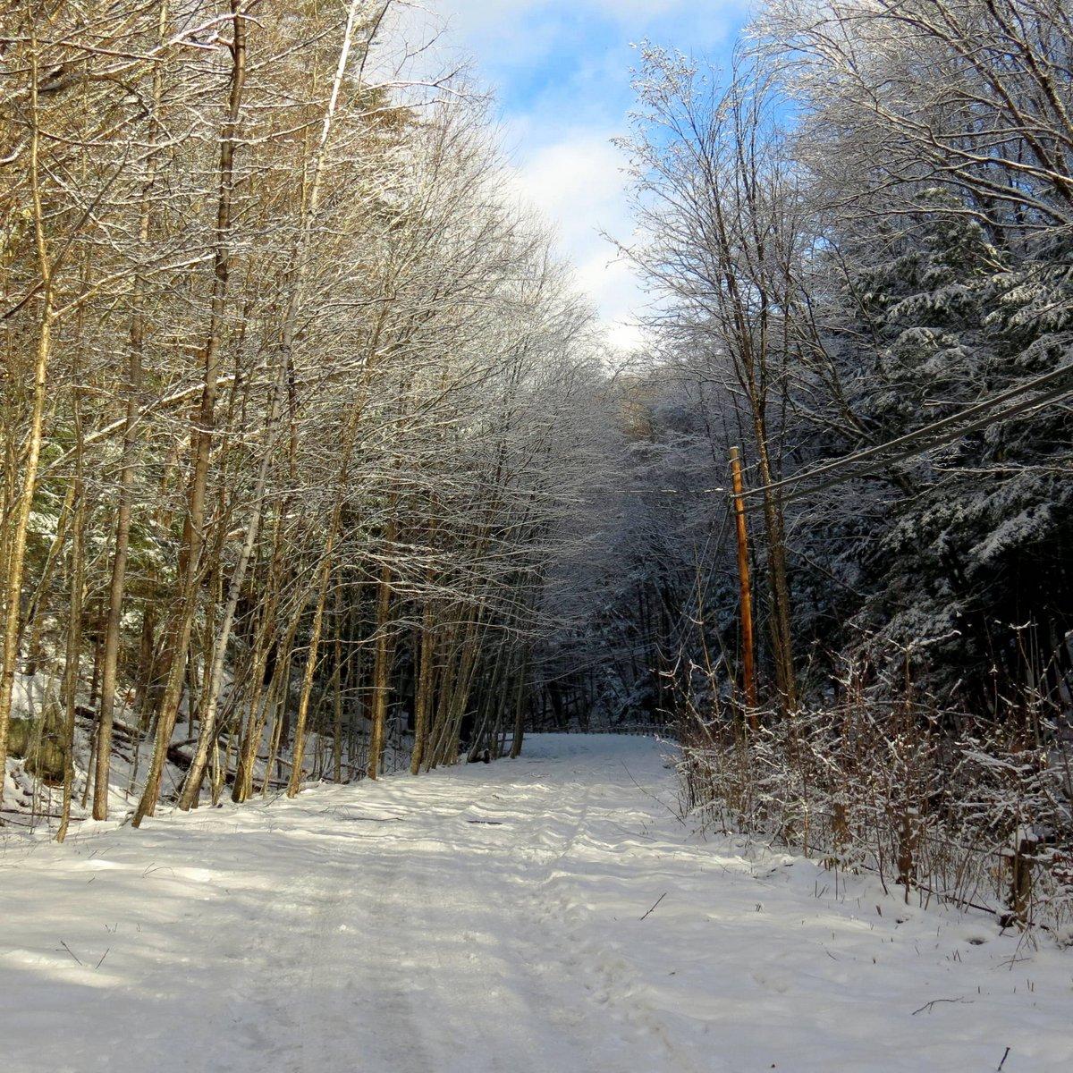 7. Beaver Brook Abandoned Road