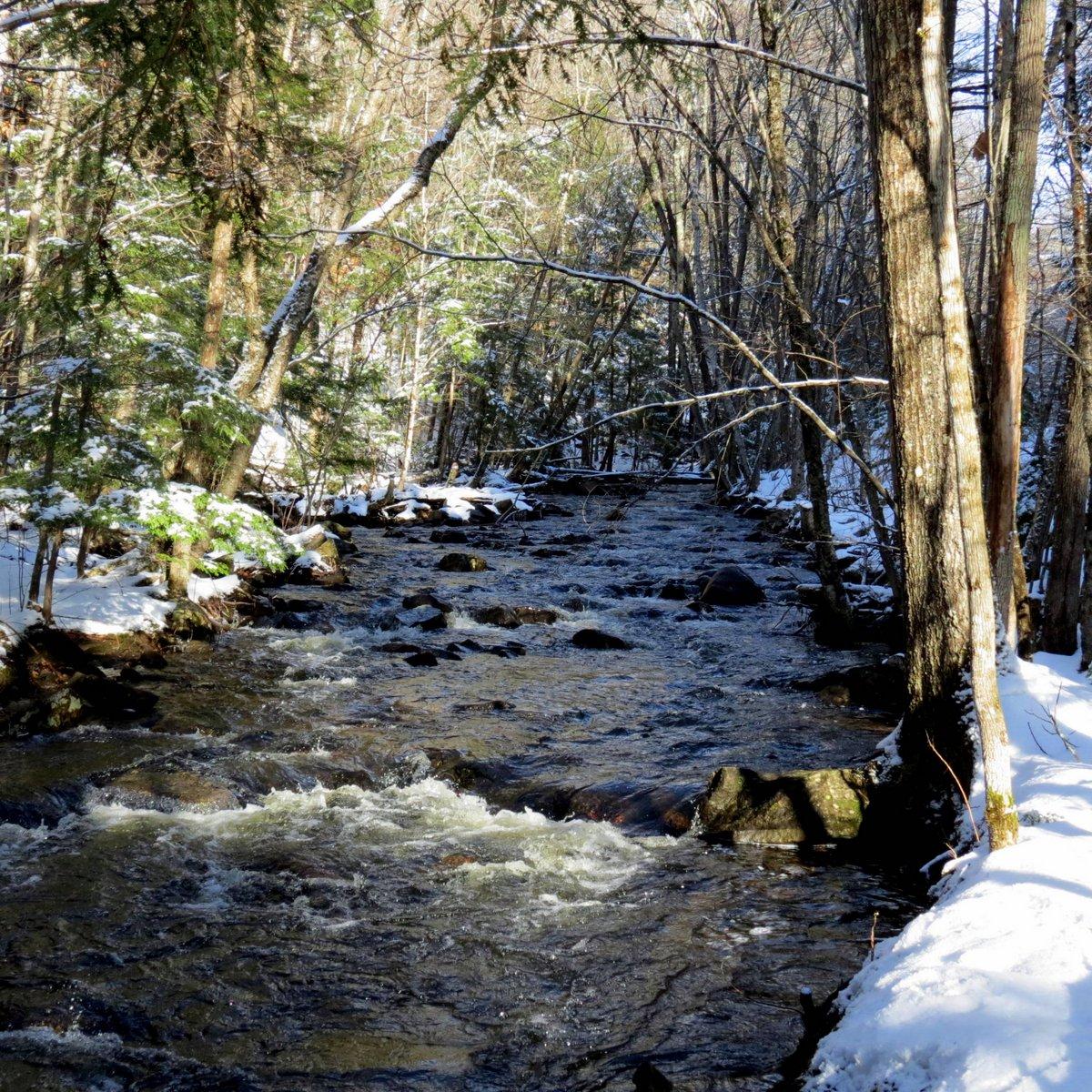8. Beaver Brook